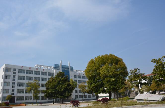 松鹤中心学校工程